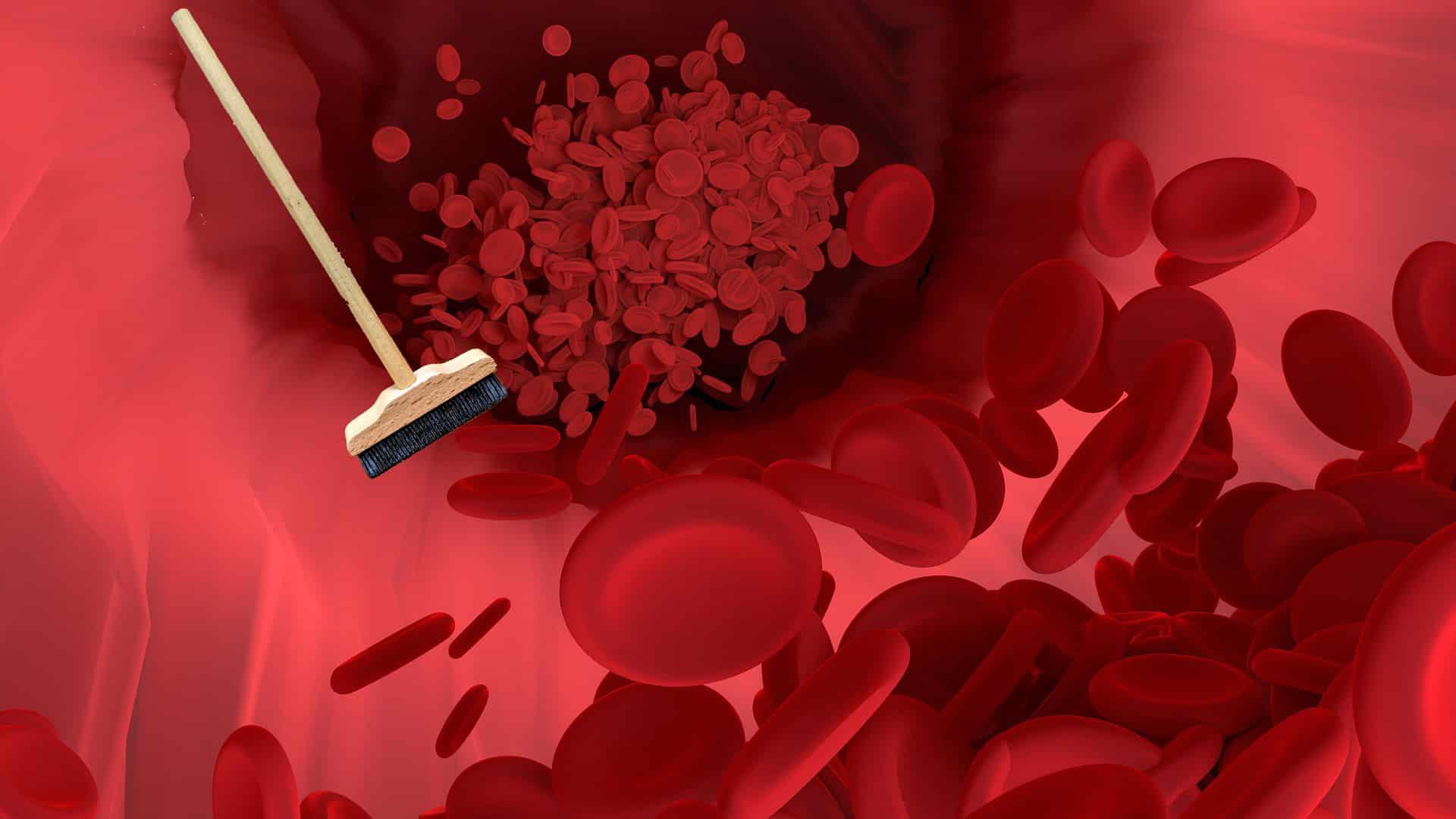 8 Lebensmittel, die deine Arterien natürlich reinigen und stärken und vor Herzinfarkt schützen