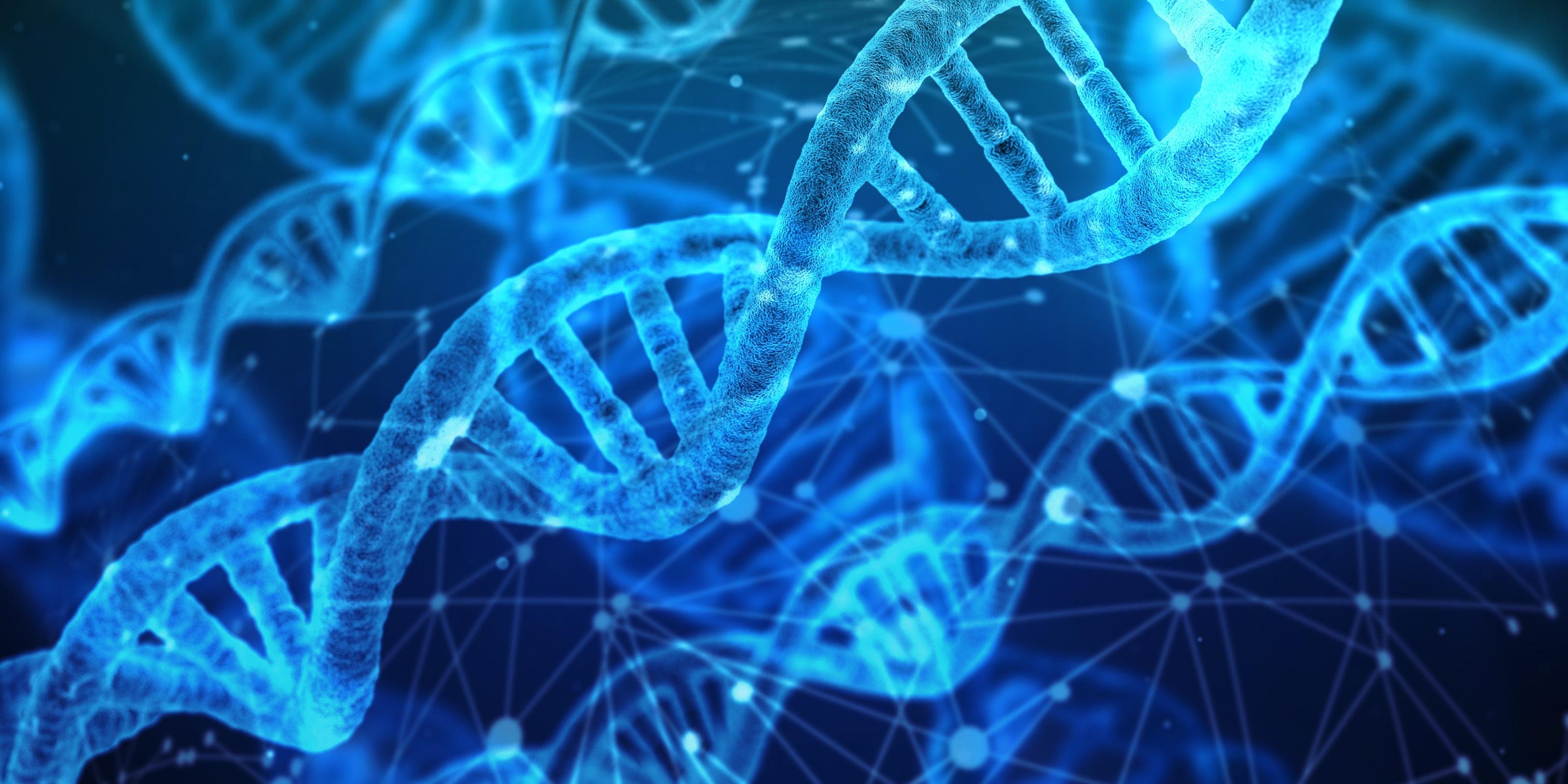 Antibiotika schädigen massiv DNA von Mitochondrien
