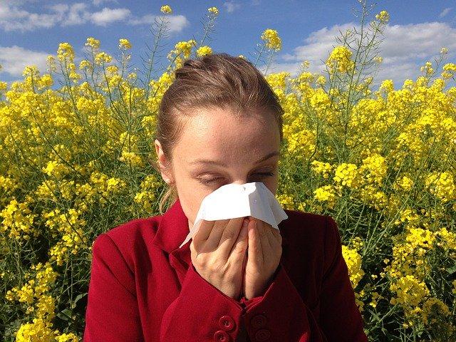 Allergien löschen, Schmerzen wegbalancieren